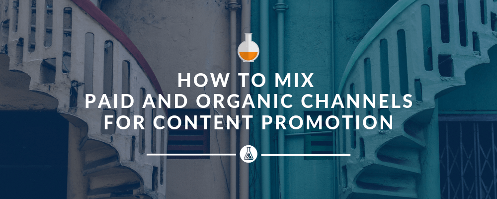 How to Combine Paid and Organic Channels for Content Promotion